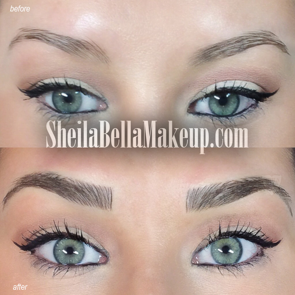 Permanent : Brows : Sheila Bella Permanent Makeup