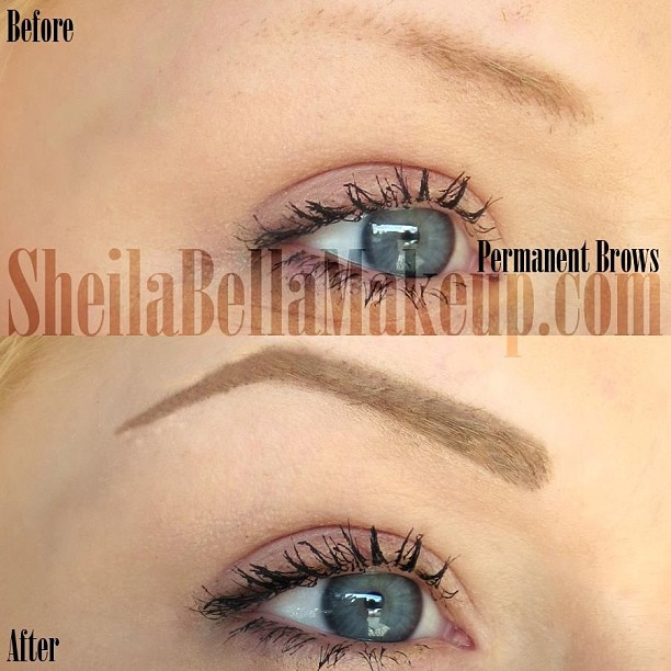 powdered look permanent eyebrows sheila bella permanent