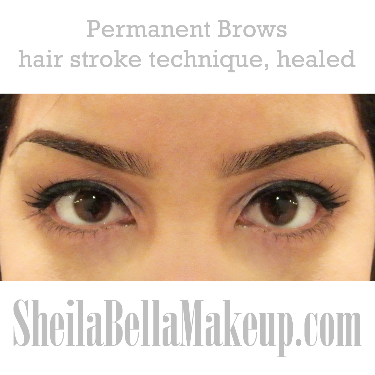 Amazing Brows Sheila Bella Permanent Makeup And