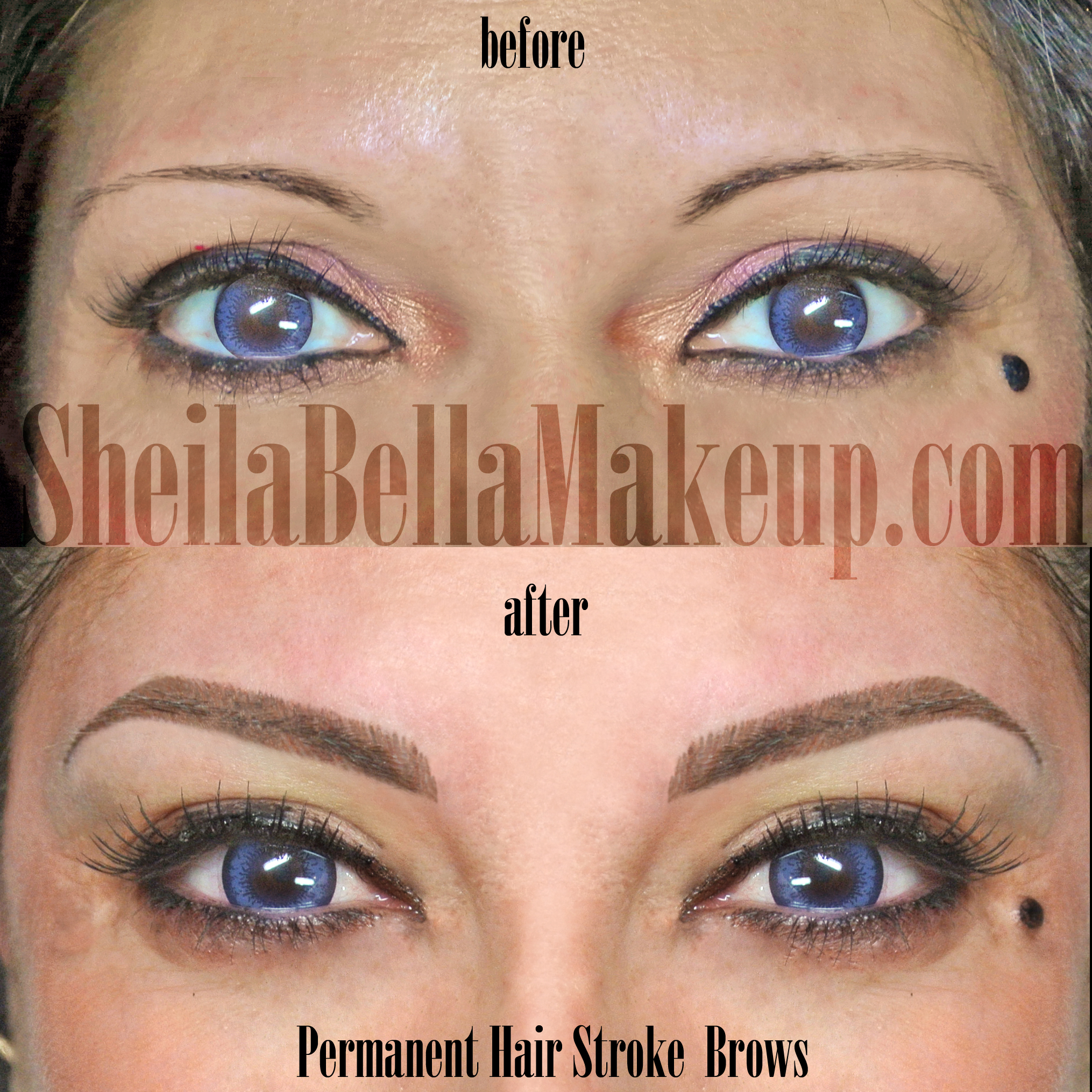 Beautiful Hair Stroke Eyebrows : Sheila Bella Permanent Makeup and ...